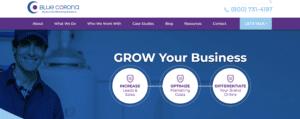 screen shot of blue corona website